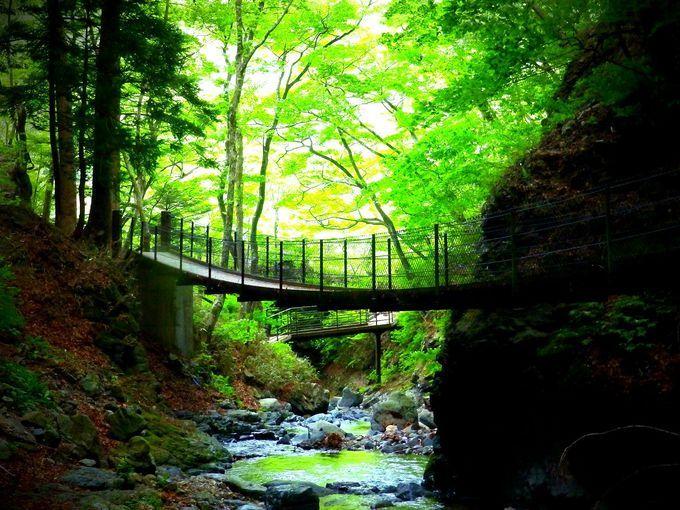 龍化の滝 栃木
