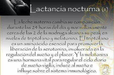 Lactancia Nocturna