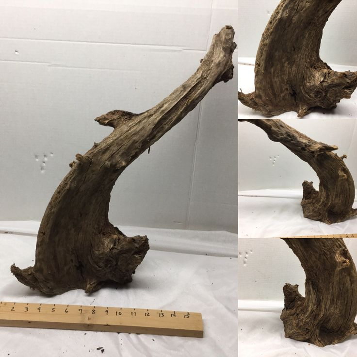 A personal favorite from my Etsy shop https://www.etsy.com/listing/511008919/large-malaysian-aquarium-driftwood-for