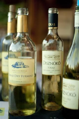 Hungarian Wine Terms, if you want to go wine-tasting :)