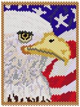 American Eagle at Sova-Enterprises.com