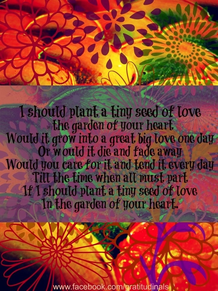 Quotes About Love Quote Garden : Love garden quote via www.Facebook.com/gratitudinals GARDEN QUOTES ...