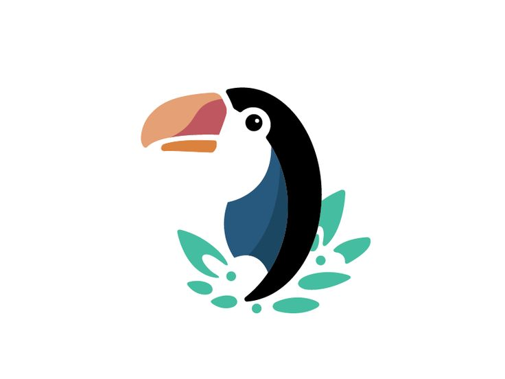 Toucan by Rae Valters