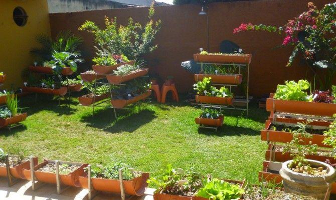 pequena horta no jardim : pequena horta no jardim:horta suspenso –