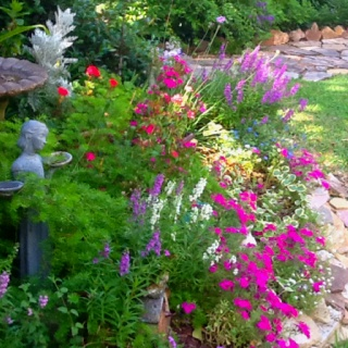 Images Of Gardens 1400 best flower garden pictures images on pinterest | flowers