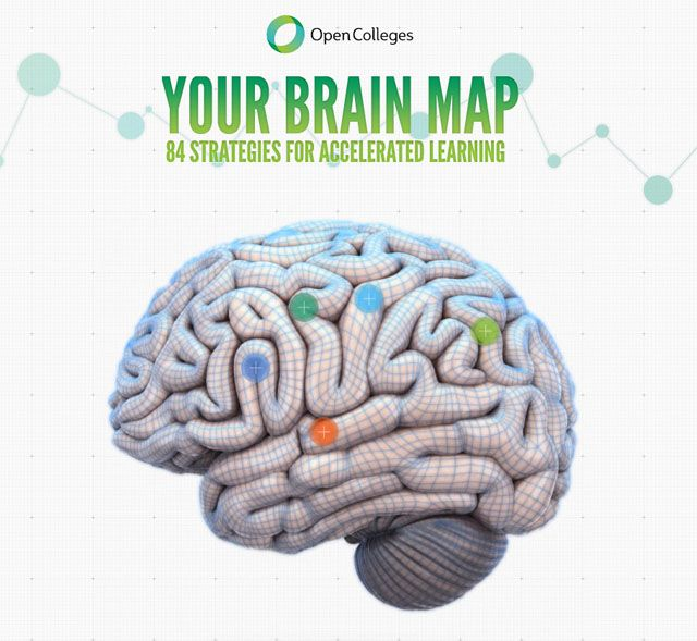 Explore the Open Colleges interactive brain map to learn about how your brain functions and ways to improve your learning.