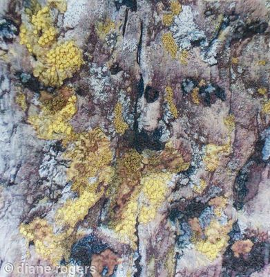 Wood with Lichen - Printed ,quilted, embroidered silk textile