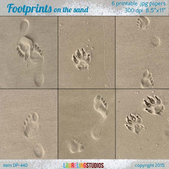 "beach digital paper: ""footprints"" with paw print and beach footprints in the sand & beach background texture, dog pawprint, scrapbook DP440"