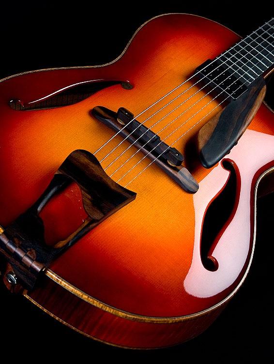 Greenfield Guitars, The Newport