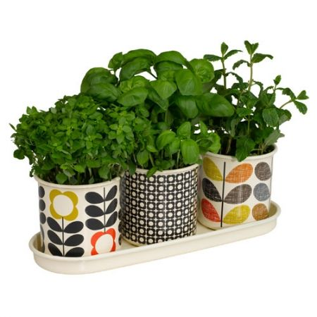 Put a little spring into your life (as well as your step!) with this expanded range of gardening and outdoor essentials from Orla Kiely. With Orla's beloved patterns by your side, you can now tend to your flower beds or herb garden and look absolutely fabulous while doing it. - hardtofind.