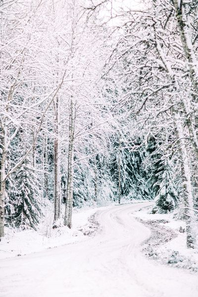 Finland, Winter wonderland II Art Print