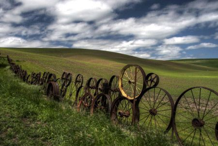 This antique wagon wheel fence is amazing.