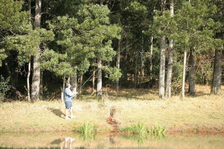 Dullstrom - Own Lake
