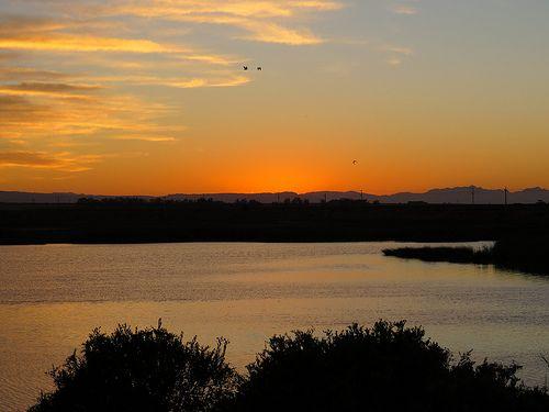 080 Sunrise from 05:00 at Kuifkopvisvanger