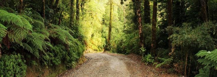 Parque Oncol, Valdivia-Chile