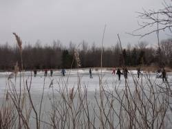 Wawanosh Wetlands - this link has access to conservation areas across Ontario, Canada.