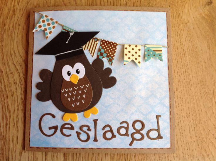 Graduation card with owl - Kaart 'Geslaagd' met uil