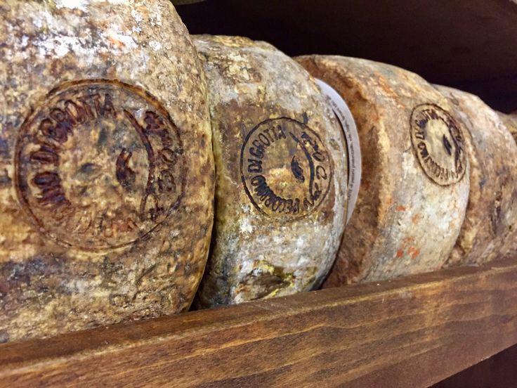 Famous Pecorino cheese