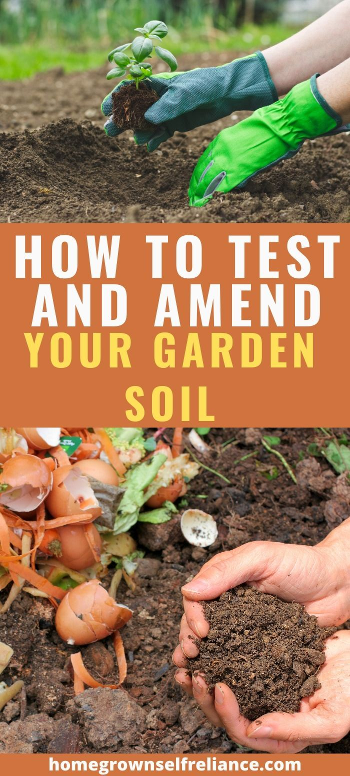 No Matter What Condition You Find Your Garden In Now There Are Easy Ways To Improve Your Garden Soil For Ch Garden Soil Preparation Healthy Garden Garden Soil