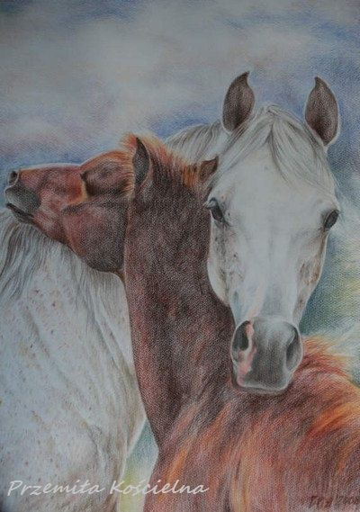 CUSTOM HORSE PORTRAIT Pastel drawing from photos by CanisArtStudio, #HORSEPORTRAIT, #animalart, #horseart, #horsepencilsart
