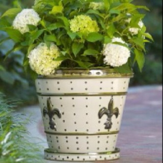"17"" Louisville Stoneware planters - already on my deck!"