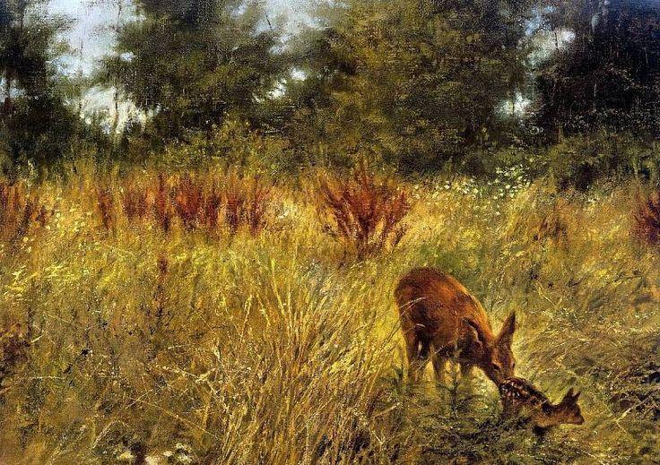 Poortvliet Rien Nature 008 Sun, Автор: Poortvliet, Rien