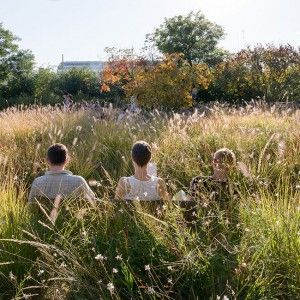 Martin Luther King Park / Paris, France by Atelier Jacqueline Osty & Associates