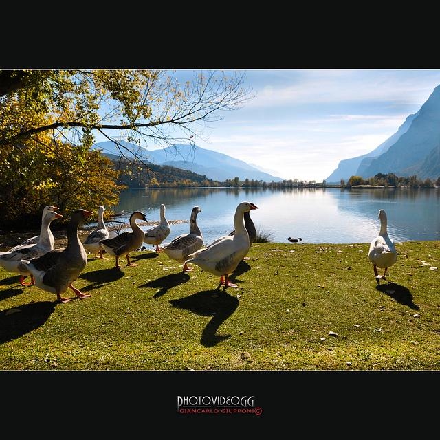 Lago di Toblino by Giancarlo Giupponi  Trentino, via Flickr