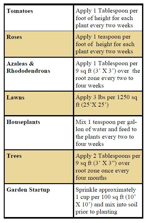 A Guide to using Epsom Salt in the Garden | thegardengeeks • Epsom salt is made up of magnesium sulfate. Magnesium is critical in the formation of chlorophyll and in aiding the absorption of phosphorus. Epsom salt as a plant food provides a greener appearance in acid loving plants such as tomatoes, outdoor lawns, rhododendrons, camellias, roses, and azaleas.