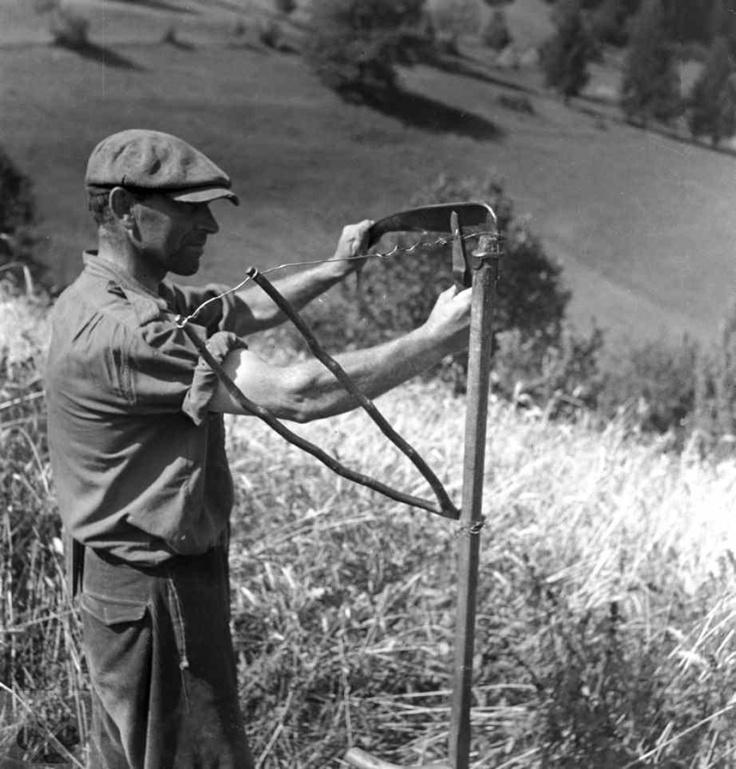 Kosec. Frígľovo, okr. Rimavská Sobota. Foto V. Nosáľová, 1956. Archív negatívov Ústavu etnológie SAV.