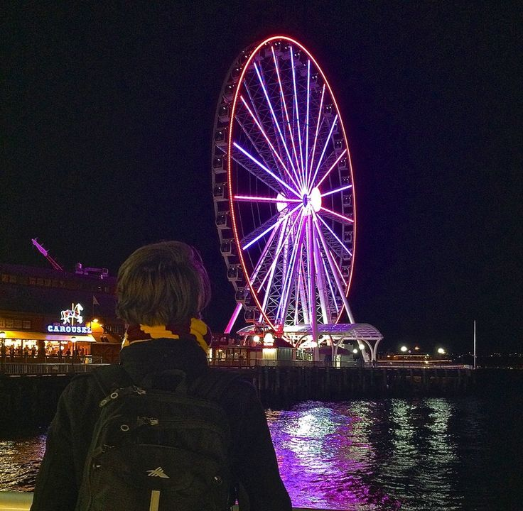 Waterfront Ferris Wheel