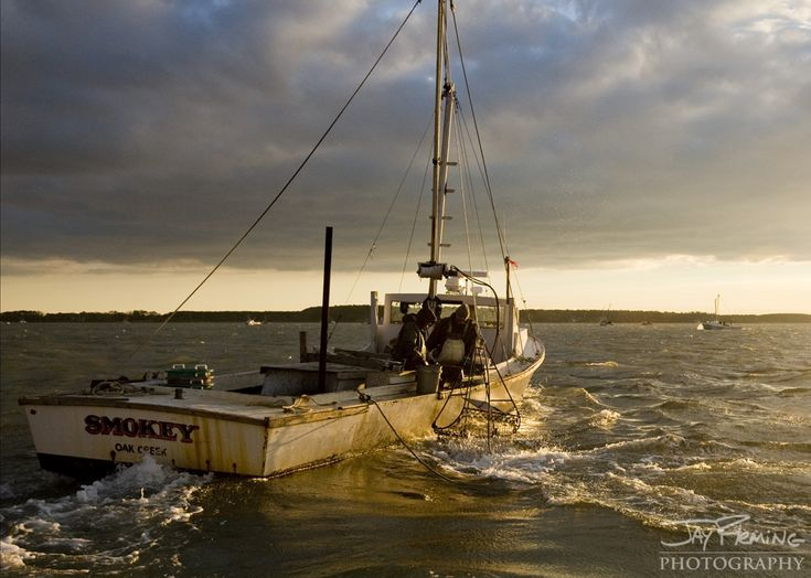 105 best images about chesapeake bay deadrise on pinterest for Chesapeake bay fishing