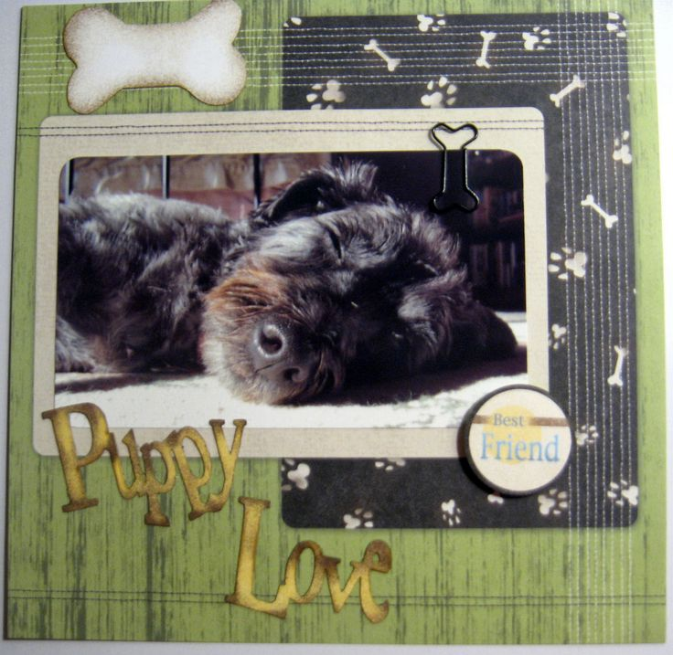 Puppy Love - Scrapbook.com