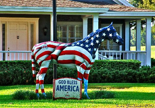 Ocala, FL...I DO NOT LIVE VERY FAR FROM OCALA,  they have painted horses every where....OCALA IS THE HORSE CAPITAL OF THE WORLD....I HAVE ALSO LIVED IN OCALA...