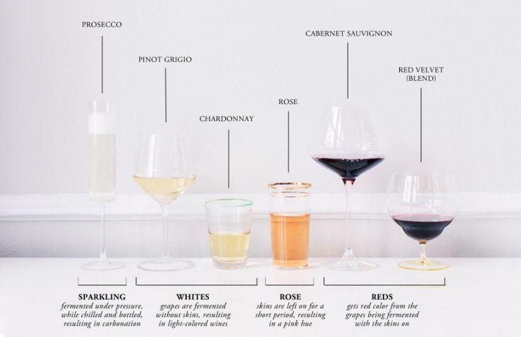 Wine Education and Tasting 101 #theeverygirl
