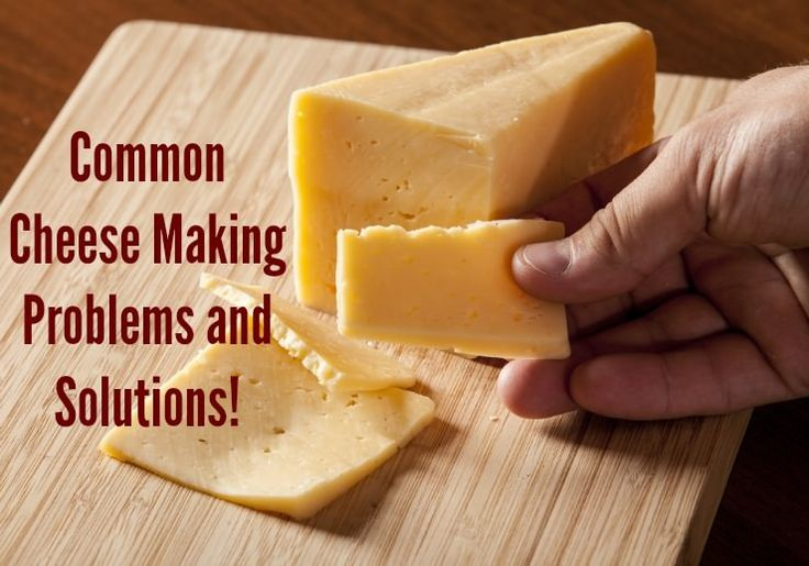 Common problems and solutions to cheese making in the home environment for both fresh and aged varieties.