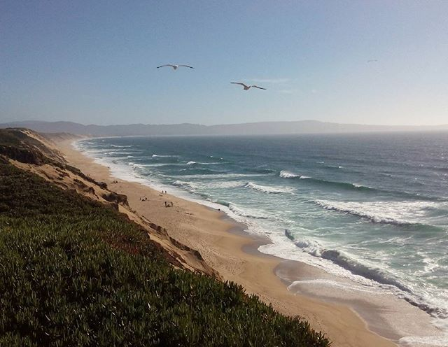 Beautiful Fort Ord! While we went surfing two whales popped up directly next to us, that is something amazing I will never forget! Imagine these animals so close, just crazy! My heart stopped for a moment :D. Pure nature around Monterey. Love it and I will miss it! #california #monterey #fortord #placetobe #lifeyourlife #surfing #whale #ocean #waves #beach #travelawesome #travel #amazing #memories #nofilter #wanderlust #marinalocals #montereybaylocals - posted by Franzi :)…