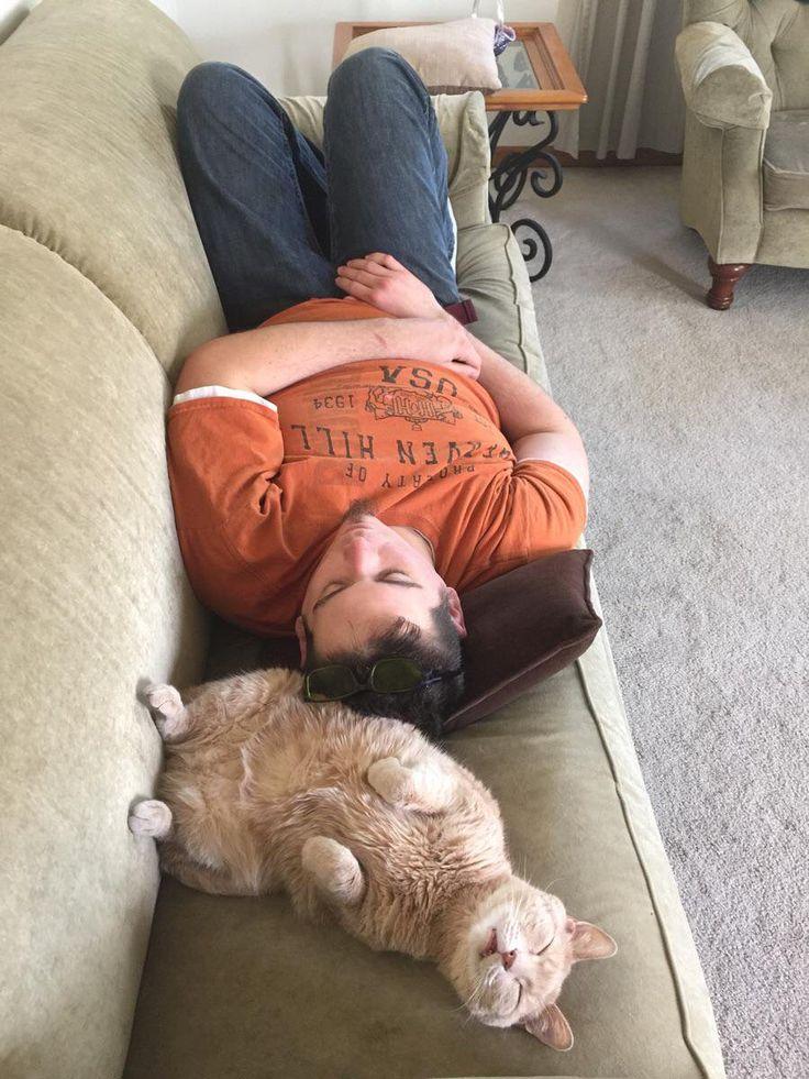 взяла спящий человек смешные фото держал все строгом