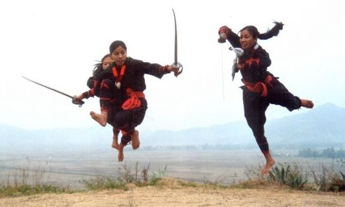Thang Ta: Thang Ta is popular term for the ancient Manipuri Martial Art also known as HUYEN LALLONG. Manipuri martial arts with swords and spears, is a strong yet gracefully sophisticated art.