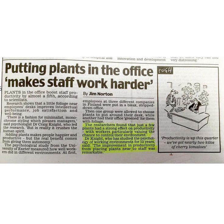 Ehm.. boleh nih untuk bapak/ibu bos dan manager supaya dipertimbangkan  tanaman bukan hanya bikin hepi bersihkan udara kantor tapi juga bisa buat makin produktif dan semangat kerja  . . Image by @acacia_uk #dailymail  #tanamanbikinhepi