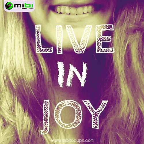 Live in joy... In Mibi, we want you to smile, we want to motivate you to get everything that you want and doing your life more easy Know us! www.mibitopups.com Mibi, Near you!