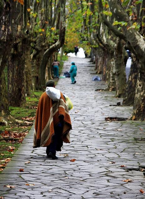 Tradição no outono (Tradition in the fall), Rio Grande do Sul, Brazil,  by Miriam Cardoso de Souza, via Flickr