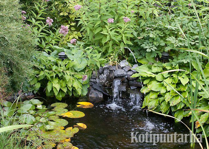Vehreän kasvillisuuden ympäröimä minilampi ja vesiputous. www.kotipuutarha.fi