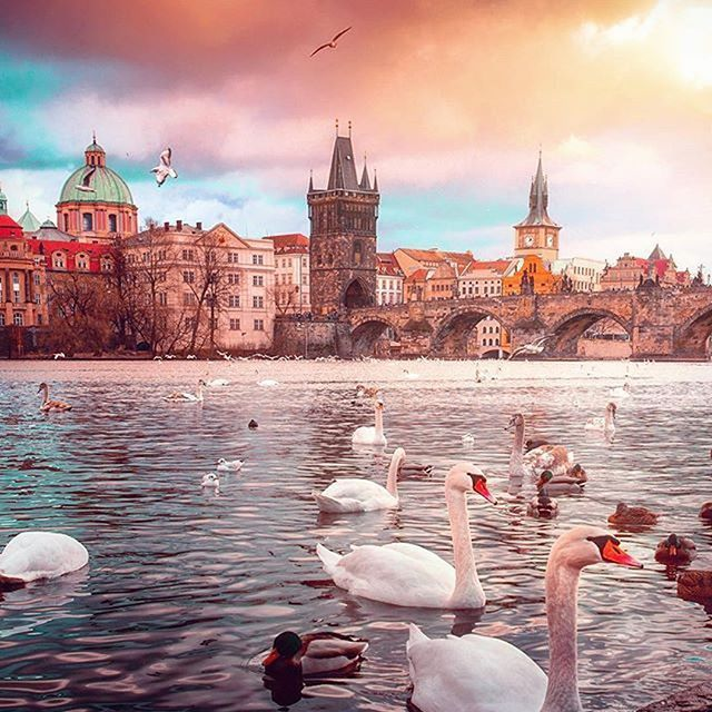 ✨Have a nice day, friends!✨  📷Amazing shot by @ypsylon_ 😍  ✈️  🚋Mark your photo with tag #Pragueworld and we'll post it!    #Vysehrad #igersprague #newyearnewme #praguestagram #prague #praha #Прага #czechrepublic #pragueworld #city #vsco #vscocze #iglifecz #architecture #vsco_grid #vscofeature #vscophile #vscoedit #TopEuropePhoto #earthfokus #passionpassport #aroundprague #europe_vacations #wonderfulworld #toppraguephoto #Czech #instaprague #Europe #wonderful_prague