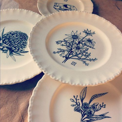 hand embellished antique plates with an image of an Australian native flower
