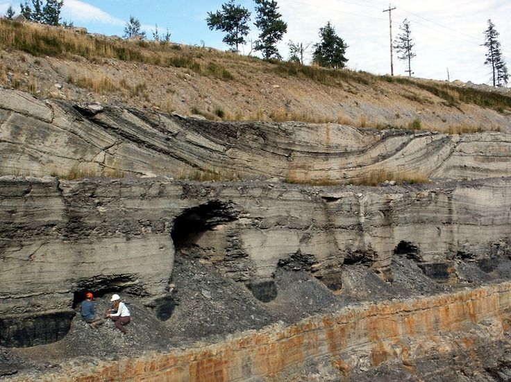 Lacustrine Deposits | By observing modern environments and their sediments and sedimentary ...