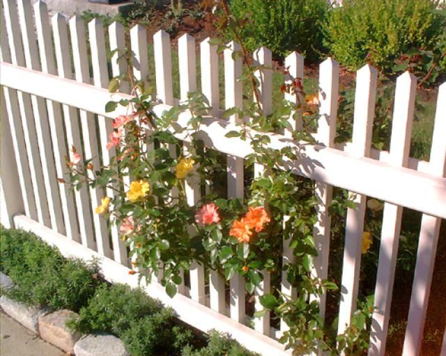 Fence Pictures: Rose Garden Fences  thanks to landscaping.about.com