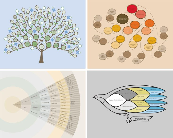 modern genealogy | My Tree and Me designs and customizes modern genealogy charts.