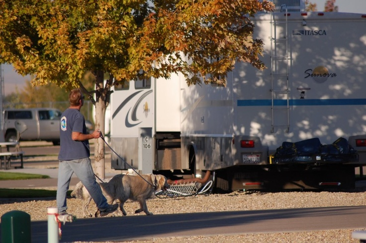12 Best Tent Trailers Images On Pinterest Tent Trailers