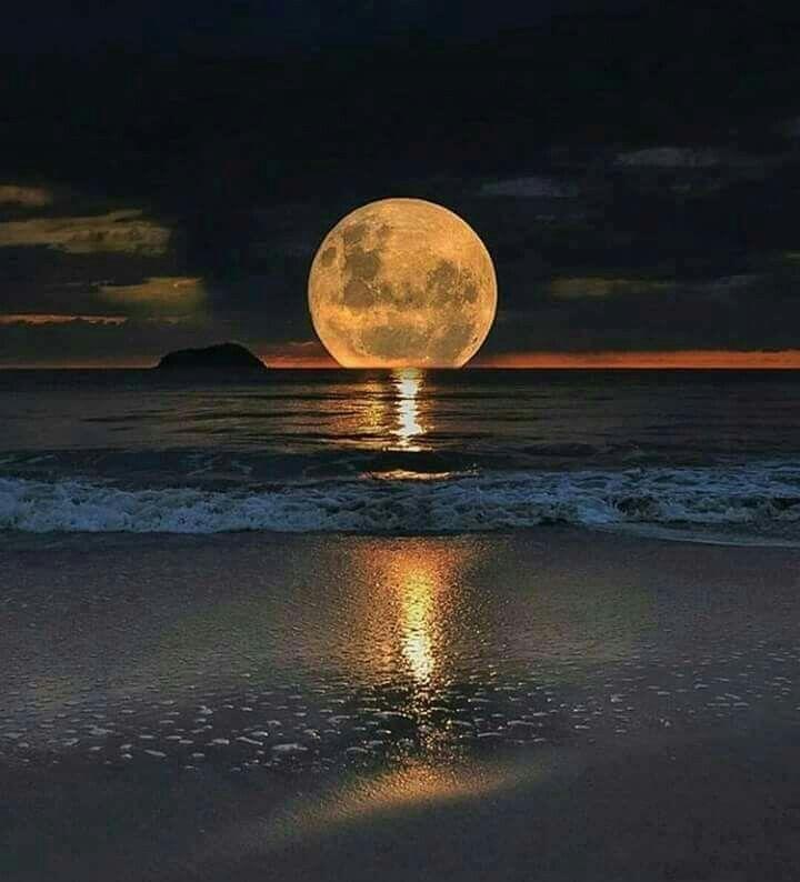 Luna y playa  4126d90930